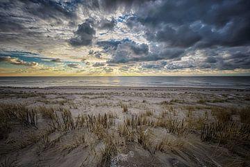 Sonnenuntergang Maasvlakte von Leon Okkenburg