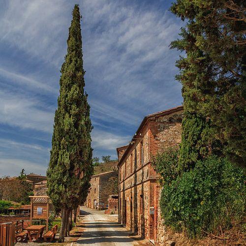Toscane, Lucignano d'Asso - Val d'Orcia