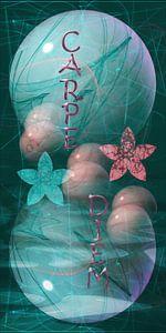 Carpe Diem - Pflücke den Tag