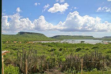 Salzpfannen der St. Marie Bay von rene marcel originals