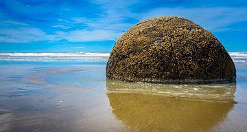 Een van de Moeraki Boulders, Nieuw Zeeland van Rietje Bulthuis