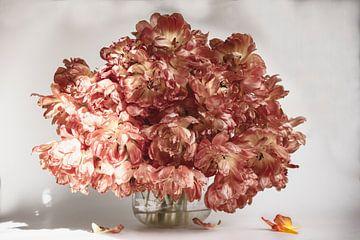 Hochkarätige Tulpen von Roland de Zeeuw fotografie