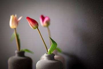 Drie grijze kruiken met tulpen van Victor van Dijk