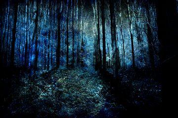 Aan het eind van een bos #06 van Peter Baak