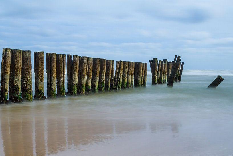 Zeewering in de Noordzee van Mark Scheper