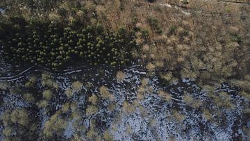 Drone-beeld van een dooiend boslandschap van Adrian Meixner