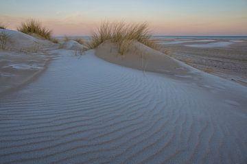 Besneeuwde Zeeuwse duintoppen van Marcel Klootwijk