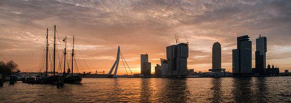 Rotterdam Panorama in de ochtendzon (maas met erasmusbrug) van Erik van 't Hof
