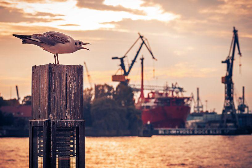 Hamburg Harbour van Alexander Voss