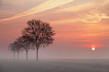 Das Morgenrot von Ina Bloemendal