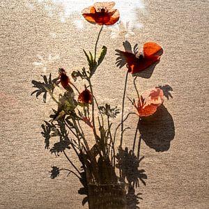 schatten mit Blumen von Stefan Havadi-Nagy