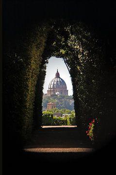 St. Peter's Basilica von Sander van Dorp