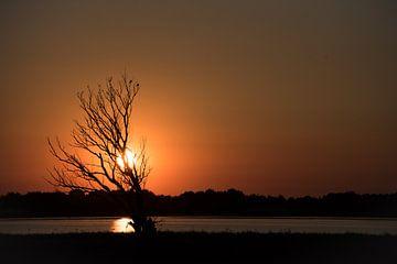 Sonnenuntergang von Francis Dost