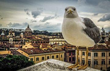 Rome van Frans Scherpenisse