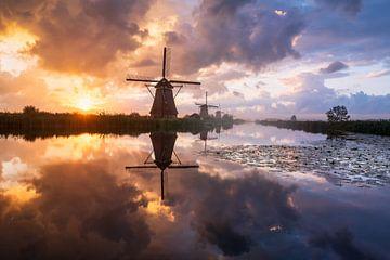 Mühlen in Kinderdijk bei Sonnenaufgang von Ellen van den Doel