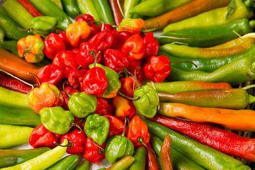 Peppers van Ton van Buuren