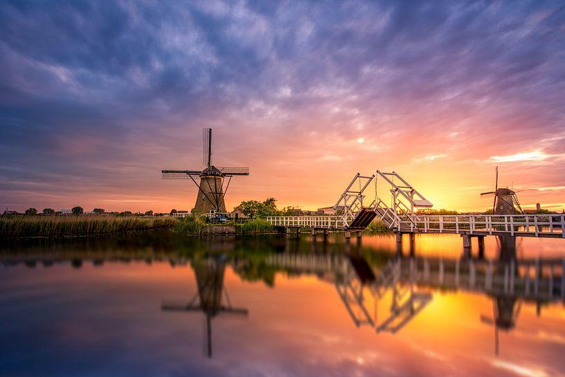 Dutch Golden Gate van Michiel Buijse