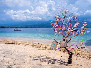 Indonesien - Gili Air - Der Recycling-Baum von Rik Pijnenburg