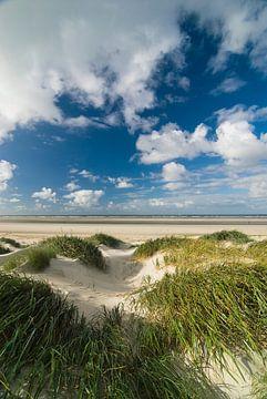 Duinen bij Rottum eiland in de Waddenzee van Sjoerd van der Wal