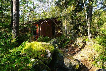 Verwunschenes Haus in Schwedens Wäldern von Thomas Zacharias