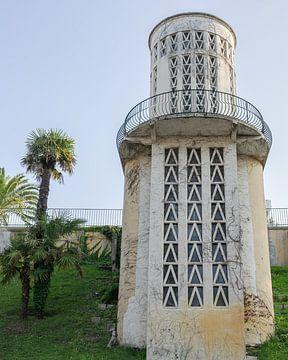 Französischer Aufzugsturm und Palme von Jonai