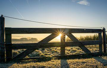 Zaun Sonnenaufgang von Willian Goedhart