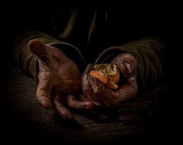 mandarijnenschillen von Jiske Wijmans @Artistieke Fotografie