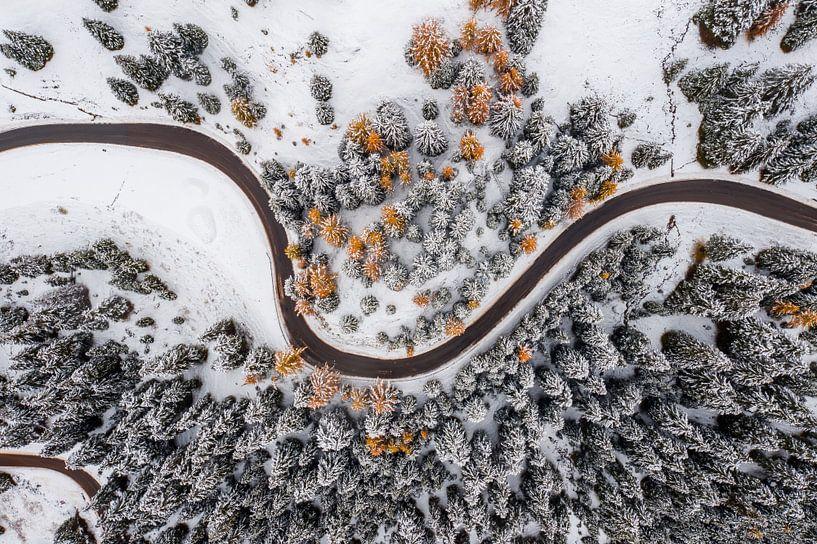 Winter in de Herfst van Thomas Bartelds