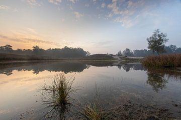 Mistige zonsopkomst Zeist bosmeertje Heidestein van Peter Haastrecht, van