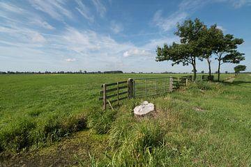 Sfeerbeeld polderlandschap Alblasserwaard van Beeldbank Alblasserwaard