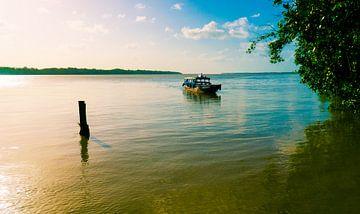 Watertaxi in Suriname van Bert Broer
