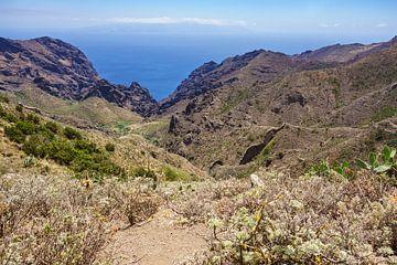 Landschaft auf der Kanarischen Insel Teneriffa von Rico Ködder
