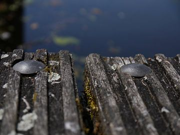 close wood sur Marloes Vissers-Schurman