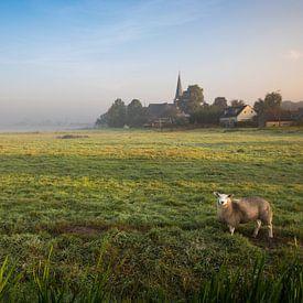 Hollands nevelig landschap met grazendeschapen en een typisch nederlandse wolkenlucht. Wout Kok One2 van Wout Kok