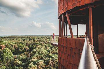 Wachturm De Bosberg-Turm in Appelscha, Friesland von Expeditie Aardbol
