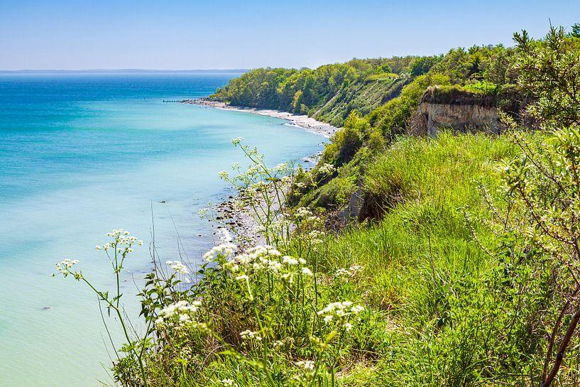Steilküste bei Kap Arkona auf der Insel Rügen von Rico Ködder