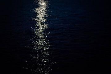 Tanzender Mondschein von Ellis Peeters
