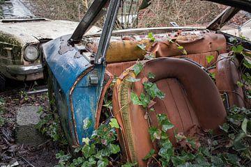Verlassene Autos von Tim Vlielander