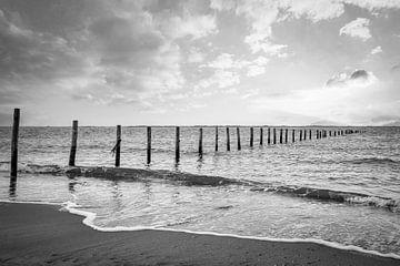Maasvlakte Strand Stangen im Meer in schwarz und weiß von Marjolein van Middelkoop