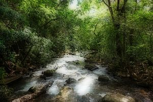 Onstuimig water (turbulant water jungle Costa Rica)