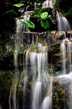 Wasserfall von Samira Uddin