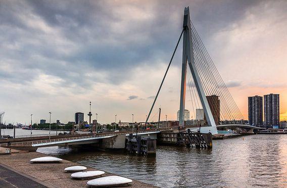 Erasmus brug van Lorena Cirstea