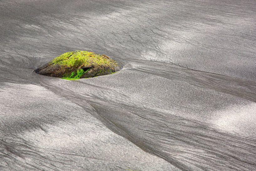 Am Strand von Talisker von Andreas Müller