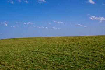 Eine grüne Wiese mit blauem Himmel und einigen Wolken von David Esser