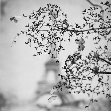 Ein Blick auf Frankreich von Joyce Kepers