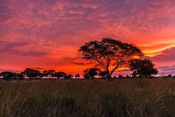 zonsopkomst Uganda van Mariette Kapitein