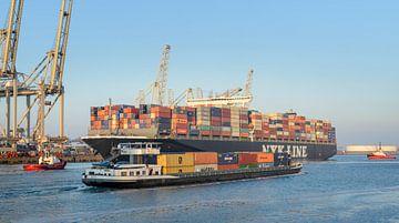Containerschiff an einem Behälterterminal im Rotterdam Hafen von Sjoerd van der Wal