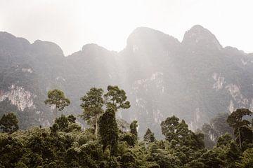 Zonsopgang in Khao-Sok, Thailand van Wianda Bongen