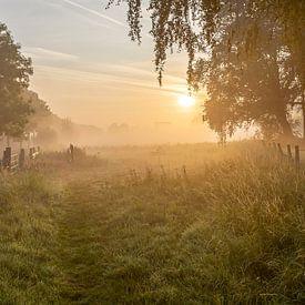 een sfeervolle mistige ochtend op de Leiemeersen in Lauwe - Menen, Belgie van Fotografie Krist / Top Foto Vlaanderen