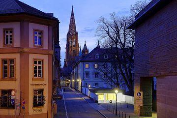 Gassenpilger Freiburg von Patrick Lohmüller